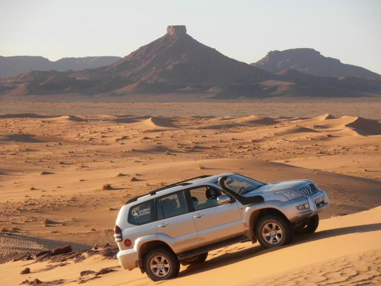 Desert Tours Day Tips