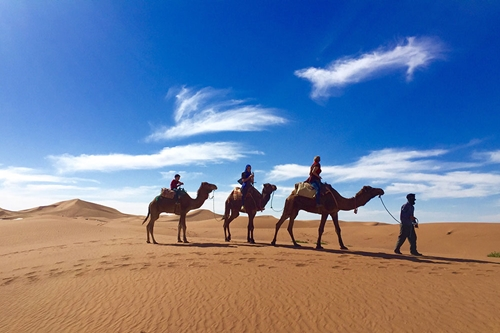 Merzouga, Dadas Gorges from Marrakech– 3 Days